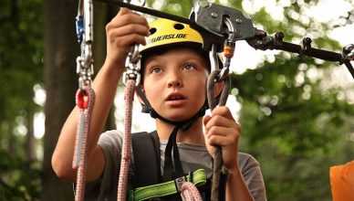 safety 388x220 - Safe Tree Climbing—How to Make Sure You've Got Everything You Need
