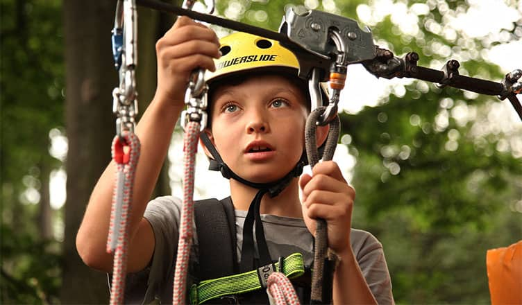 safety - Safe Tree Climbing—How to Make Sure You've Got Everything You Need